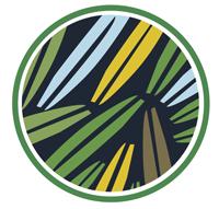 verdeo-logo2
